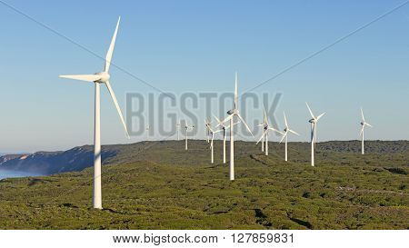 Albany Wind Farm near the town of the same name in Western Australia.