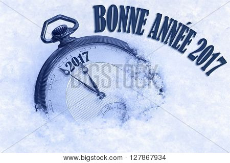 Happy New Year 2017 greeting in French language bonne annee text