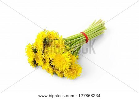 Dandelion bouquet with red ribbon isolated on white background.