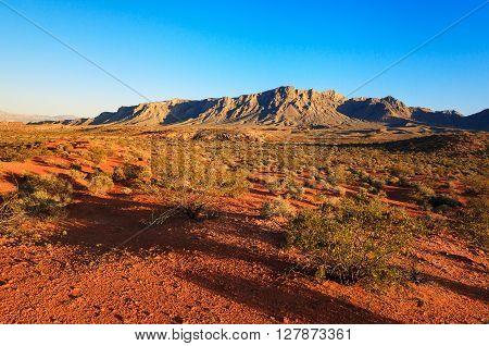 Desert over sunset Valley of Fire State Park Nevada USA