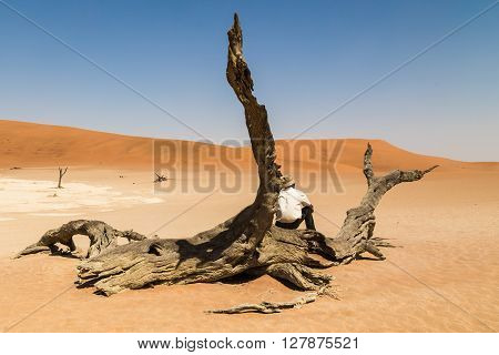 Lonely man sitting on a tree stump in the middle of the Namibian desert. Wondering about natures amazing vistas.