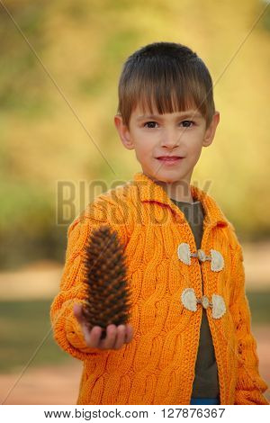 photo of little boy with pinecones in park