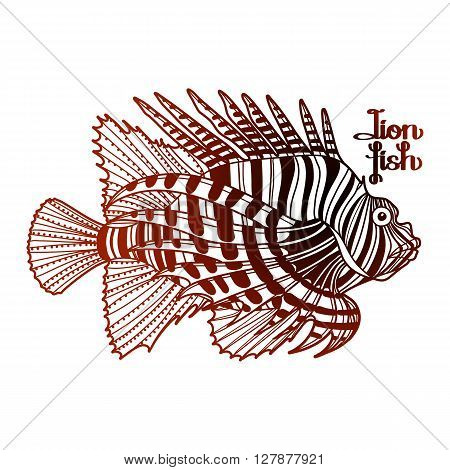 Graphic vector lion fish isolated on white background. Sea and ocean creature in black and red colors. Coloring book page design