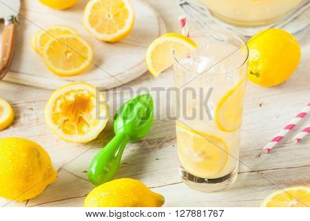 Organic Homemade Fresh Squeeze Lemonade