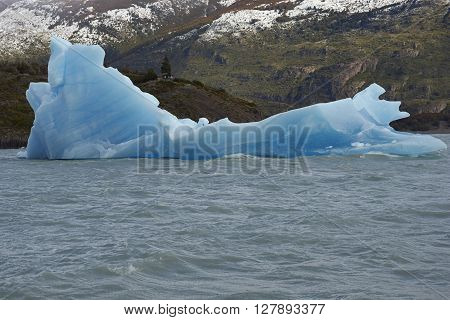 Chunk of blue ice carved from Glacier Grey floating in Lago Grey in Torres del Paine National Park, Magallanes, Chile