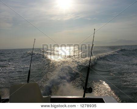 Wer ist die Fischerei