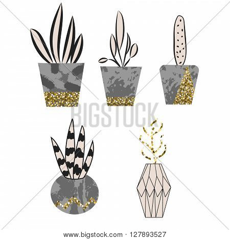 Cement flower pots with plants and gold glitter graphic decor. Home plants in concrete pots.