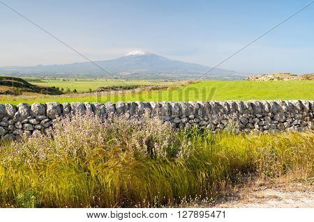 View of a typical dry stone wall a of a field of wheat in the hills near Ragusa Sicily and mount Etna in the distance