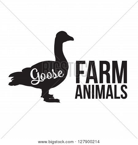Grey goose, poultry, vector illustration sketch, farm feathered animal, one color and the beautiful goose on a yellow background
