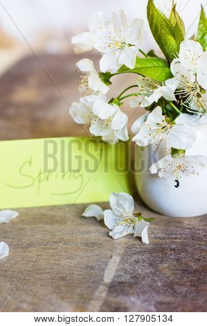 Cherry Blossom On A Table