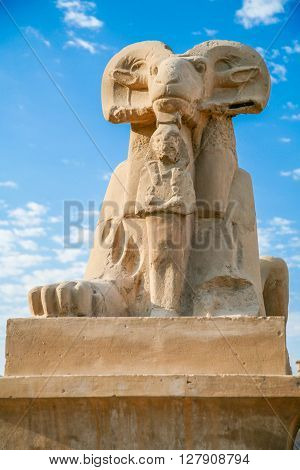 landmark of ram-headed Sphinx statue symbol of god Amon with pharaoh Ramses II sculpture public monument next to Karnak Temple in Luxor city Egypt Africa
