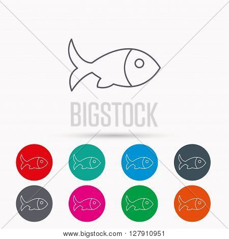 Fish with fin icon. Seafood sign. Vegetarian food symbol. Linear icons in circles on white background.