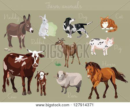Vector set of different farm animals vector illustration.