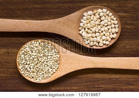 Popped quinoa cereal and raw white quinoa grains (lat. Chenopodium quinoa) on small spoons photographed overhead on dark wood with natural light