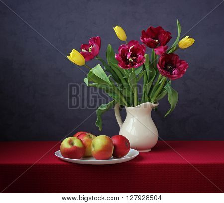 Still life with bouquet of yellow and Burgundy tulips in a white pitcher and apples on the table with a red tablecloth against a dark background. A bouquet for congratulations.