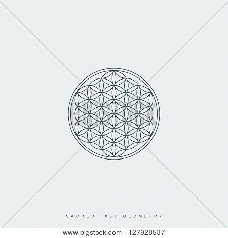 sacred geometry. flower of life. mandala ornament. esoteric or spiritual symbol. geometric line art shape. isolated on white background. vector illustration