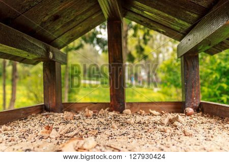 Shot made inside a birdhouse in a park