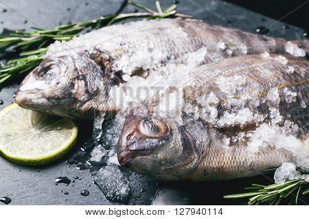 Tow Raw Dorado Fish Under With Ice