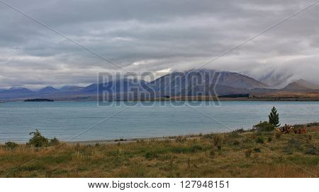 Lake Tekapo, lake in Canterbury New Zealand.