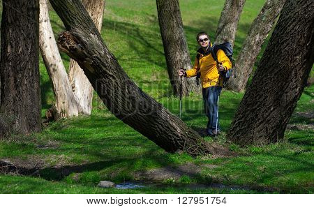 Tourist Man With The Phone Goes Through The Forestry01