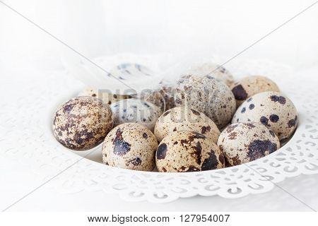 Quail Eggs Over White