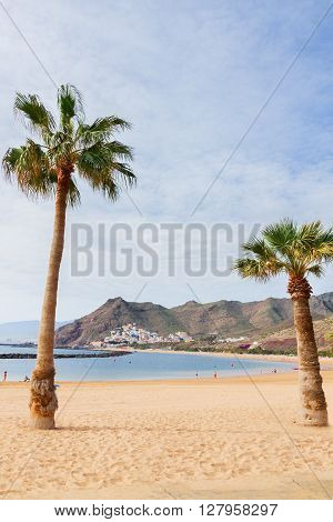 view of beach Las Teresitas with two palms  at summer day, Tenerife island, Canarias Spain