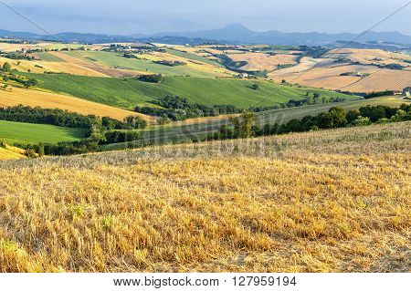 Country landscape in Marches (Italy) at summer