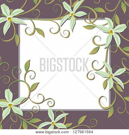 Vector illustration of Curling vines of the orchids of vanilla.