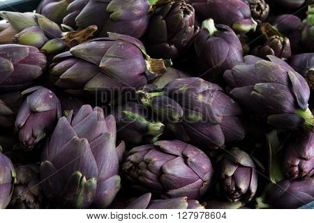 Green raw artichokes isolated on a white and black background