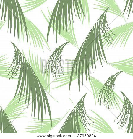 Seamless pattern berries and leaves of Acai palm. Floral background. Vector illustration. Tropical palm