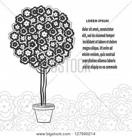 Blossom tree in pot, stylized bonsai in black and white colors. vector illustration.