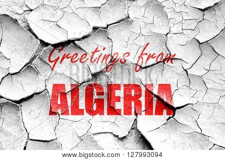 Grunge cracked Greetings from algeria