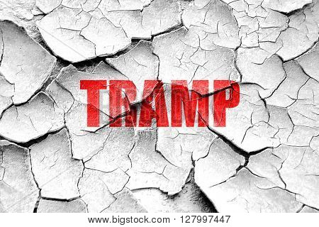 Grunge cracked tramp sign background