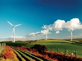foto of wind-farm  - wind turbines on a farm - JPG