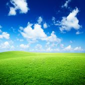 stock photo of blue sky  - field of grass and perfect blue sky - JPG