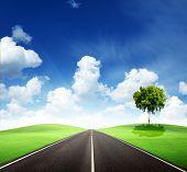 Постер, плакат: дорога и прекрасный солнечный день