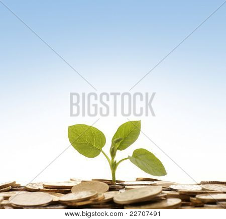 Money concept over blue background