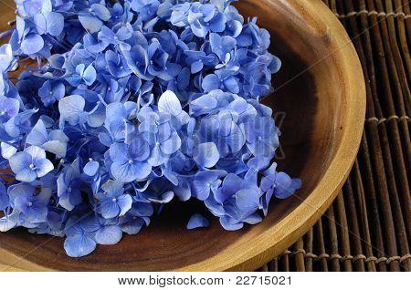 Blaue Hortensie Blume in einer Schüssel auf Matte