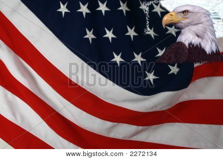 Nations Flag And Eagle