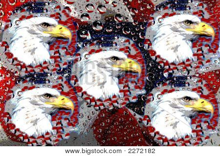 Five Eagle Heads Postrized