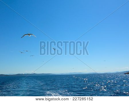 poster of Sea Surface Aerial View. Background Shot Of Clear Sea Water Surface. Blue Sea Water In Calm. Sea Tex