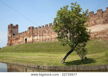 Castelfranco Veneto (treviso, Veneto, Italy): Ancient Walls And Tree\