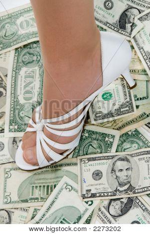 Money Shoe