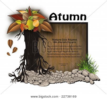 vector Board wood stone tree leaves