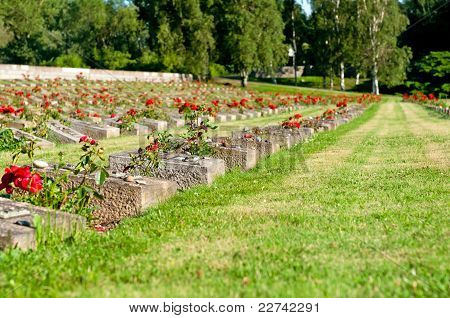 National Cemetery In Terezin