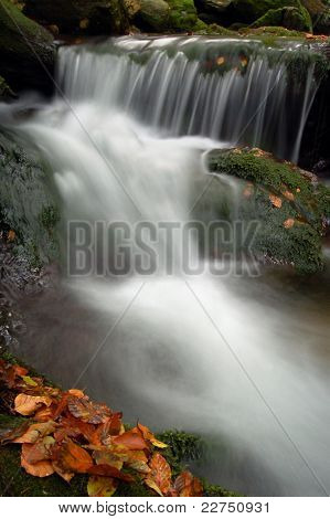 autumn stream in bohemia