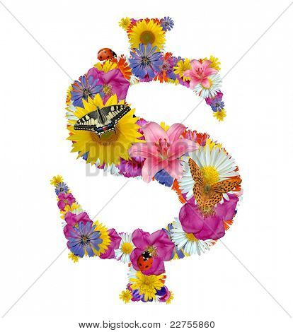 dollar symbol from flowers, butterflies and ladybug
