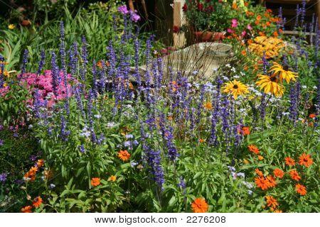 Flower Garden 081