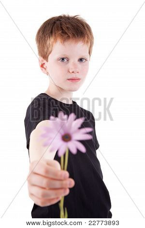 Cute Boy Offering Flowers,  Isolated On White Background. Studio Shot