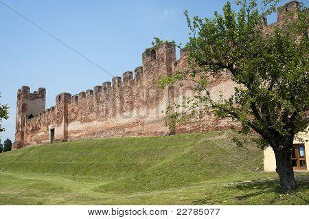 Castelfranco Veneto (treviso, Veneto, Italy): Ancient Walls And Tree